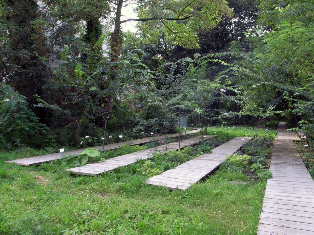 Schattengarten-foto-03