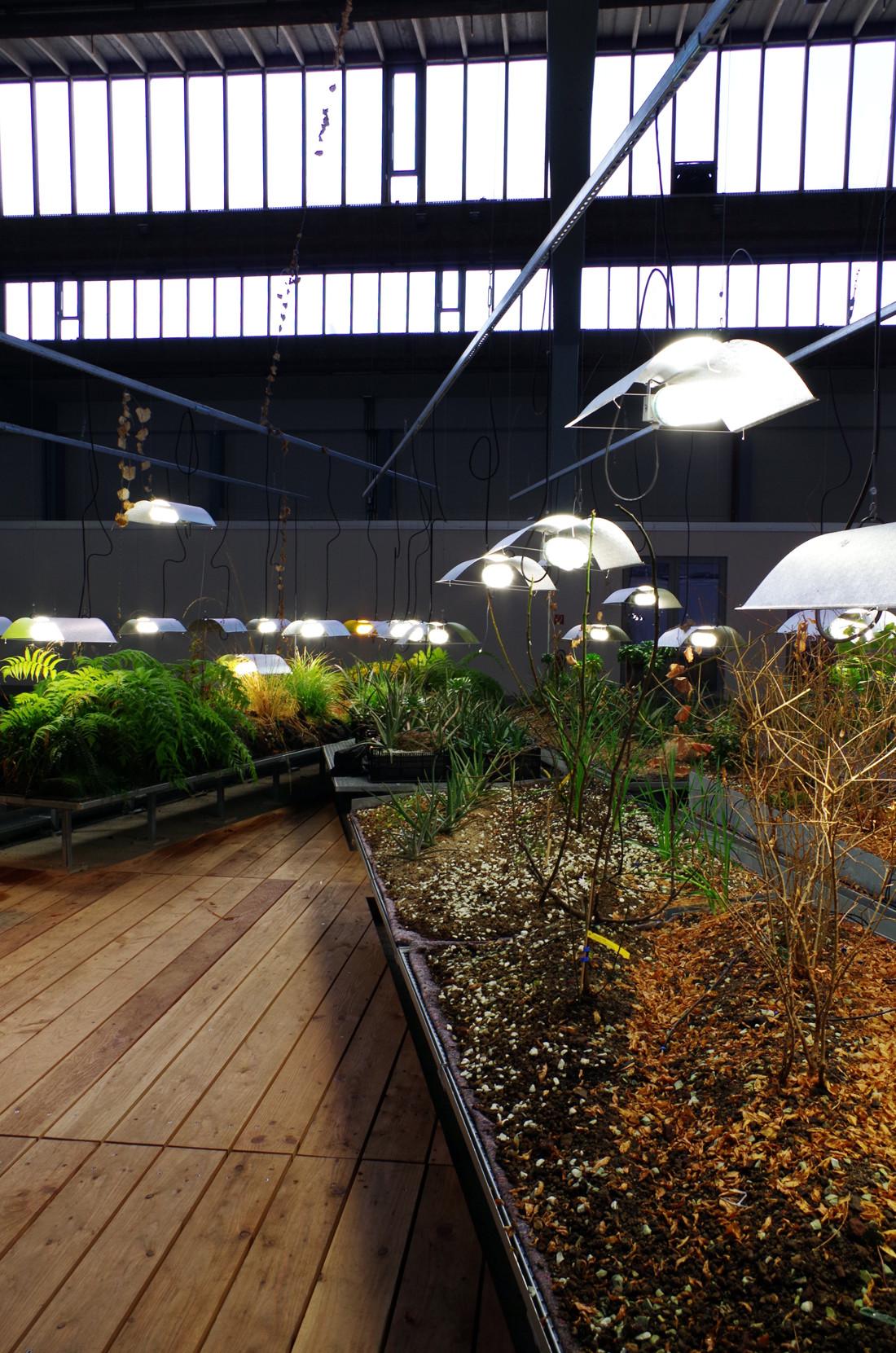 Garten-der-diaspora-berlin-09