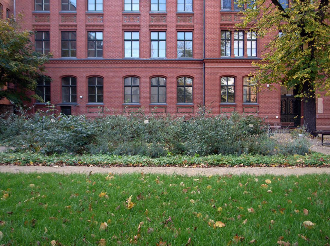 Kulturgarten-04