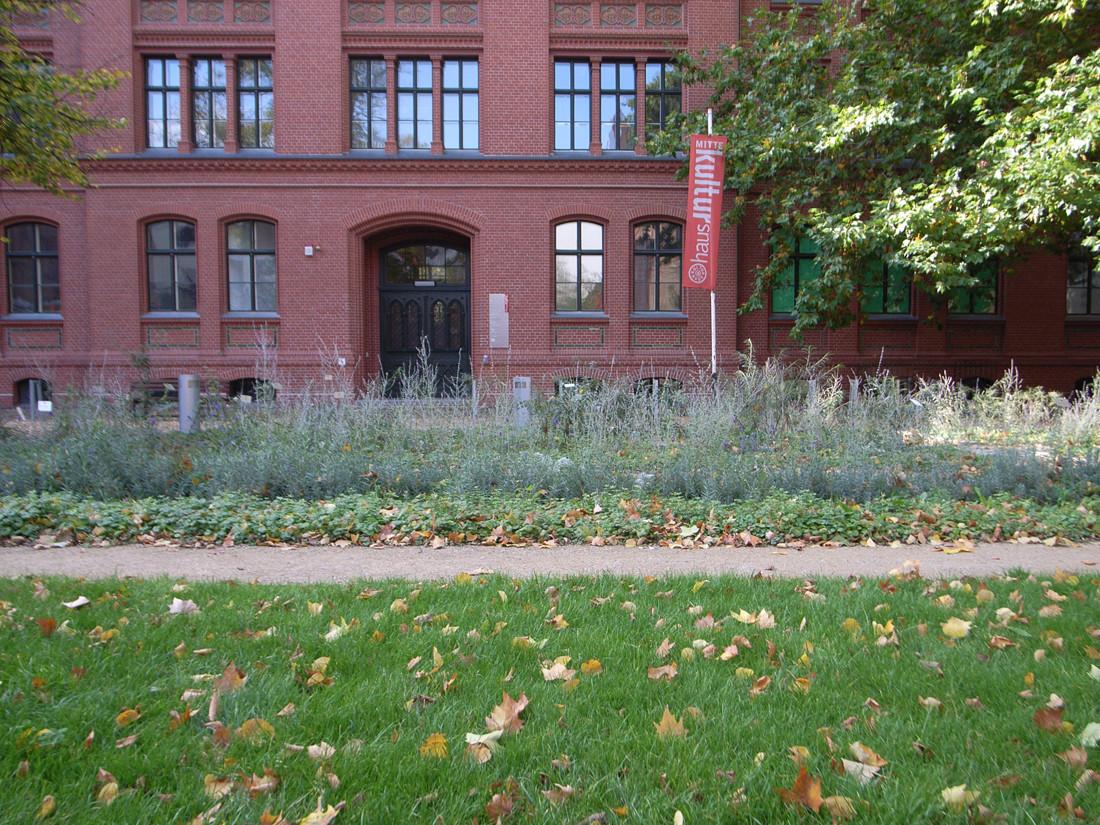 Kulturgarten-05