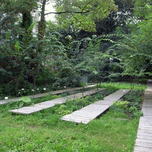 Schattengarten-thumb