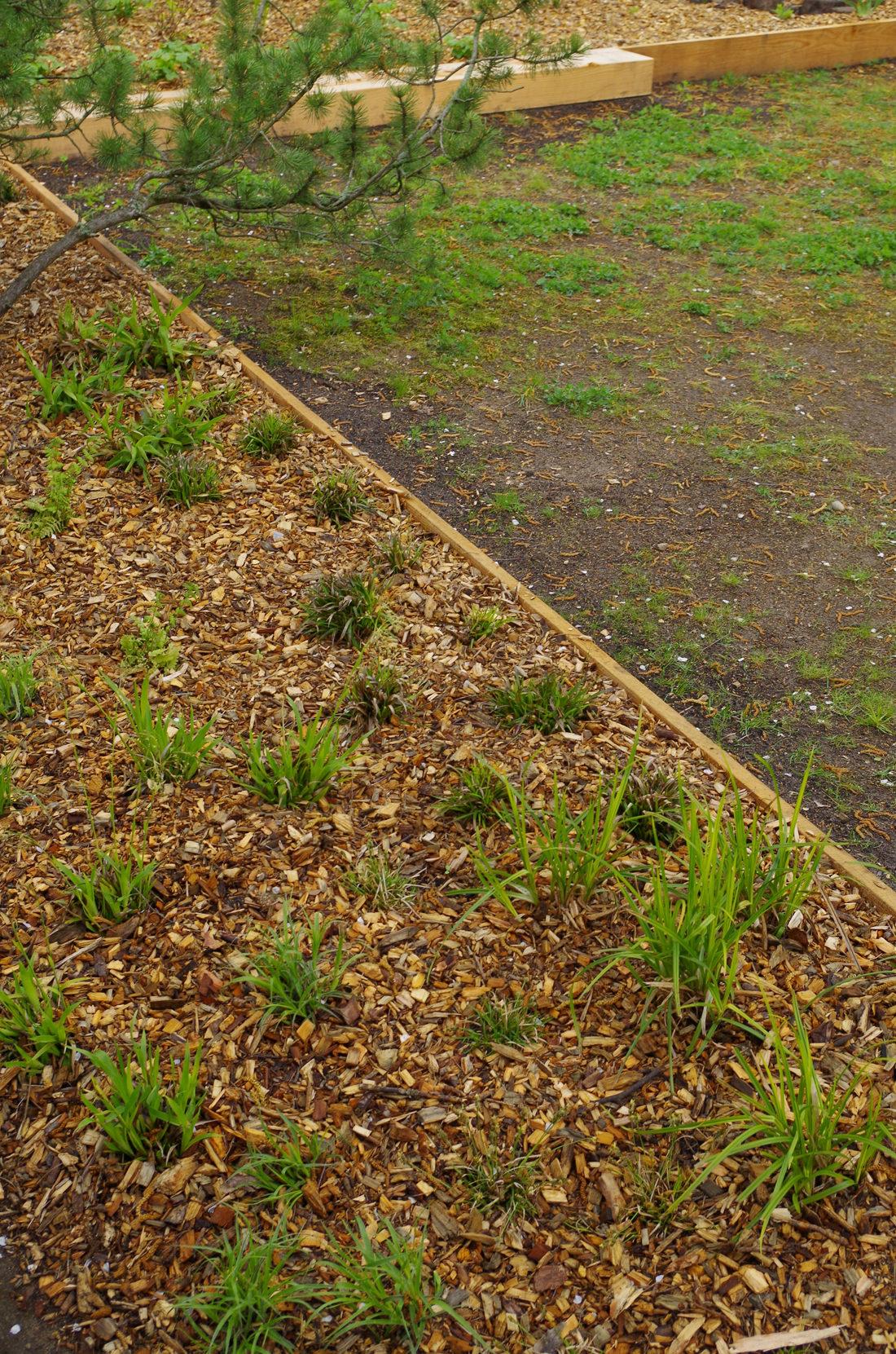 Garten LR_03