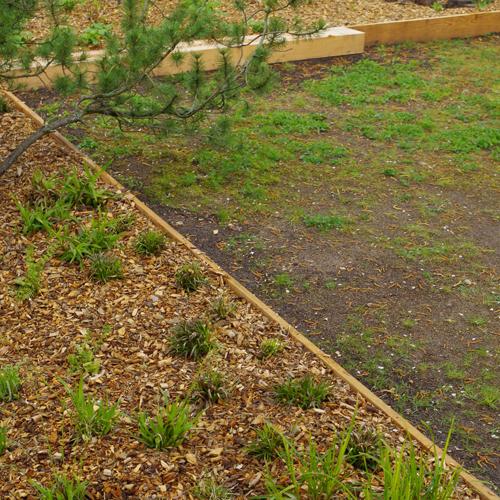 Garten LR_Thumb